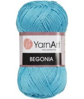 BEGONIA 8