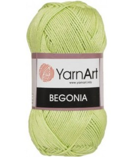 BEGONIA 5352