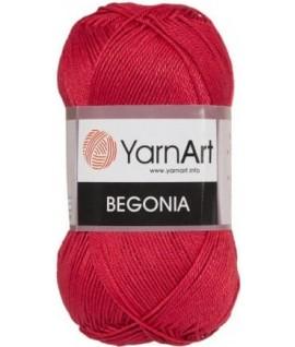 BEGONIA 6328