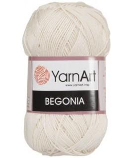 BEGONIA 6194